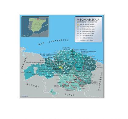Mapa Vizcaya por municipios enmarcado plastificado